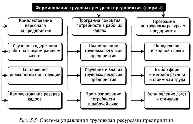 Решение задач по трудовым ресурсам с ответами паскаль решение задач одномерные массивы